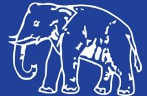 BSP to contest Assembly bypolls