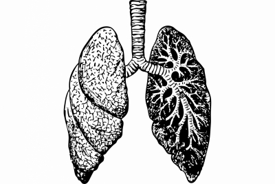 Most lungs recover well