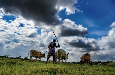 Govt urges farmers to take advantage