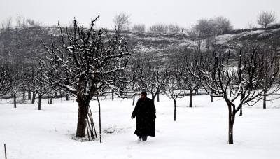 Intense cold amid dry spell