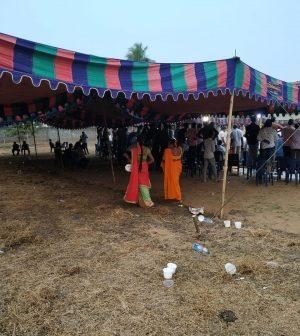 Sankranti cockfights popular
