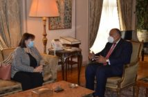 Egypt FM, EU envoy discuss