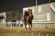 India to host equestrian tent