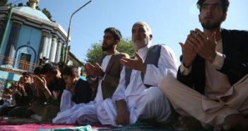 Taliban declares ceasefire