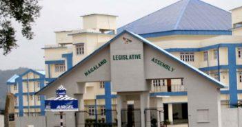 Nagaland forms 'Parliamentary
